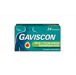 GAVISCON*24CPR MENT250+133,5MG