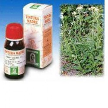 Achillea 51 50ml Tm