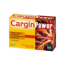 CARGIN POWER 12BUST